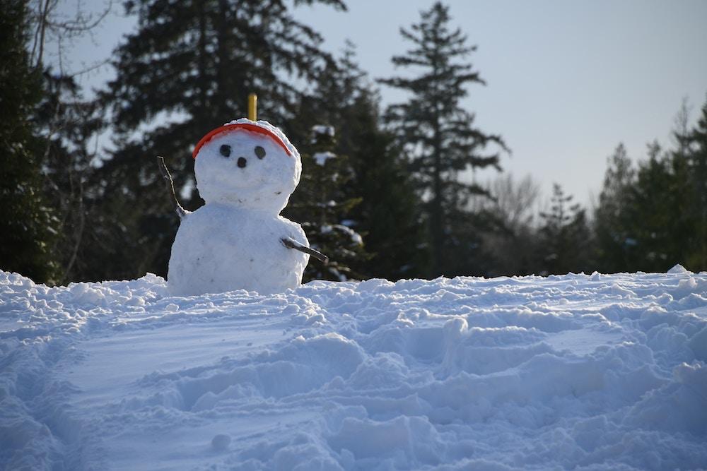 vinterstämning snögubbe
